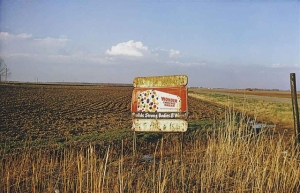 William Eggleston -wonder bread